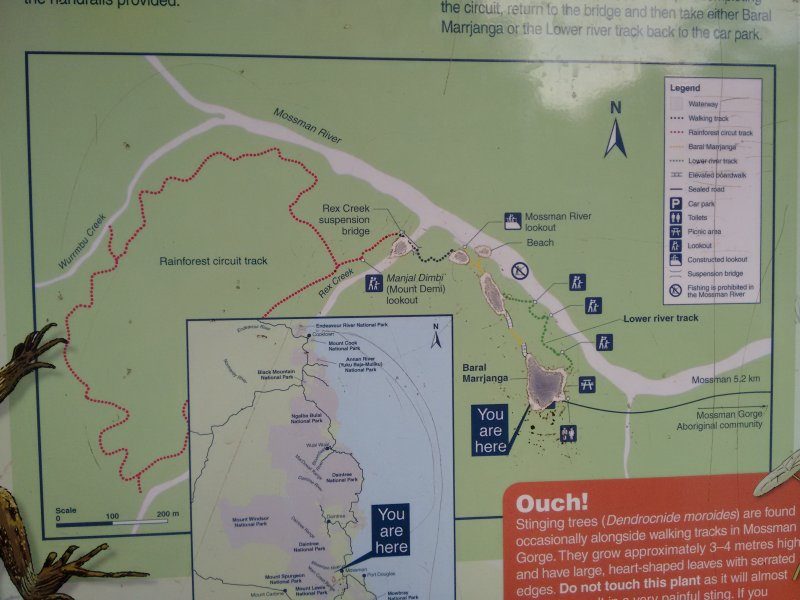 Exploring Mossman Gorge