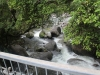 Mossman River Gorge Bridge