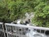 Mossman Gorge